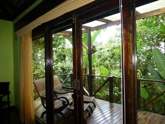 Rio Celeste Hideaway Hotel: Gorgeous view