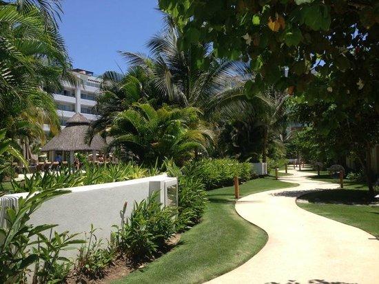 Marival Residences Luxury Resort : Jardines