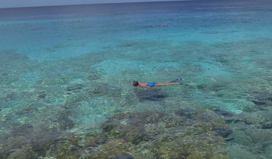 Playa Azul: Snorkeling is fabulous