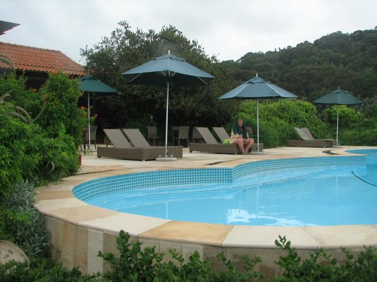 Forest Suites Hotel: Pools by ocean