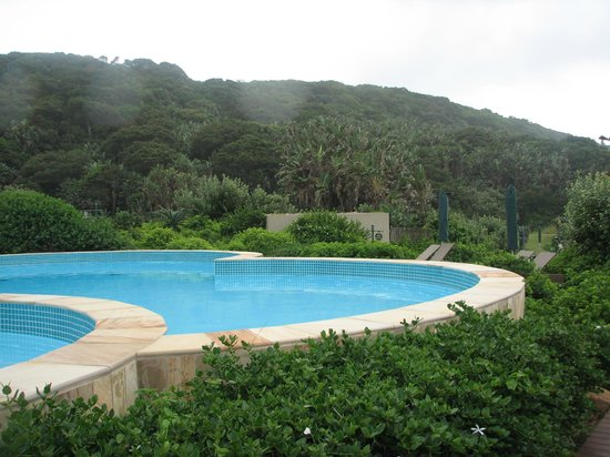 Forest Suites Hotel : Pools by ocean