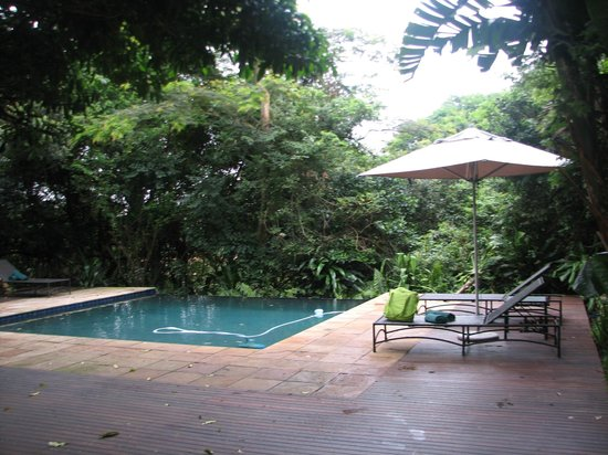 Forest Suites Hotel : Pool by reception