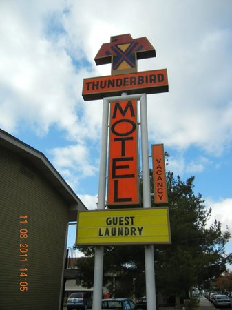 Thunderbird Motel: Retro sign