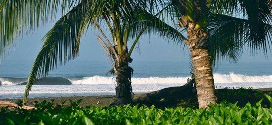 Tortuga del Mar: the beach