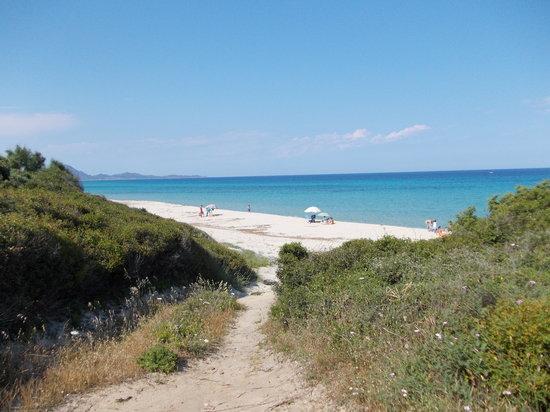 Sinnai, إيطاليا: dintorni da sogno