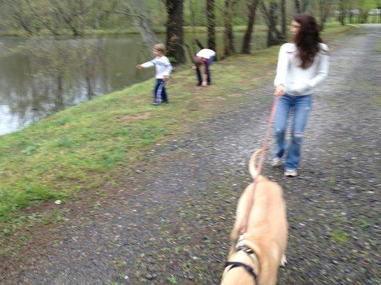 Asheville East KOA: walking around the lake
