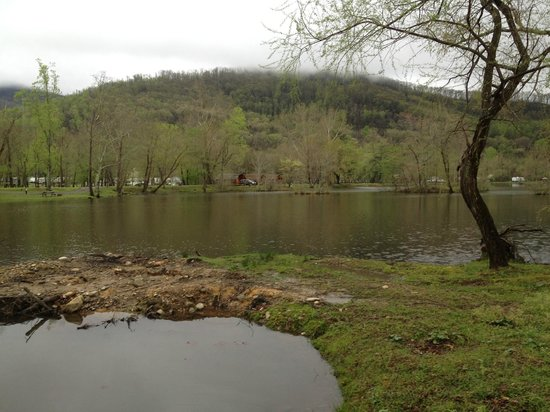 Asheville East KOA: view from trail