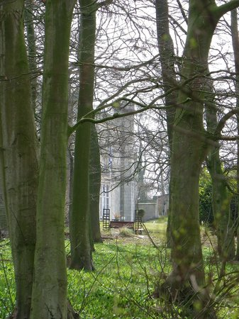 Thurnham Hall: View through the woods to the Hall