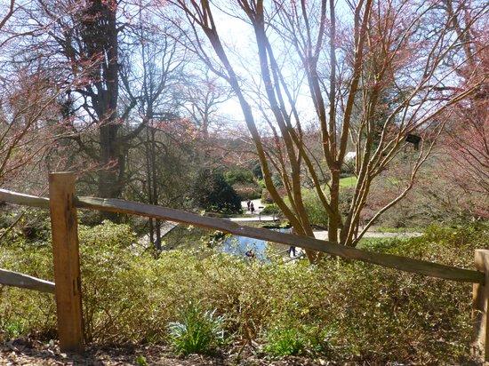 Wakehurst Place: Park