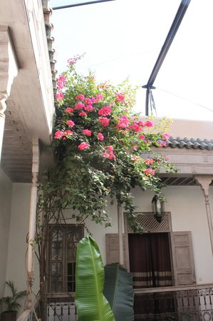 Riad Altair: Outside our lovely room