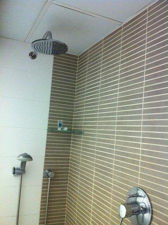 Bonanova Park : over the head/ hand held shower