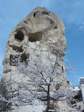 Elif Star Caves: The city surroundings in Spring