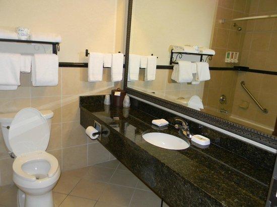 Drury Inn & Suites Las Cruces: bathroom view