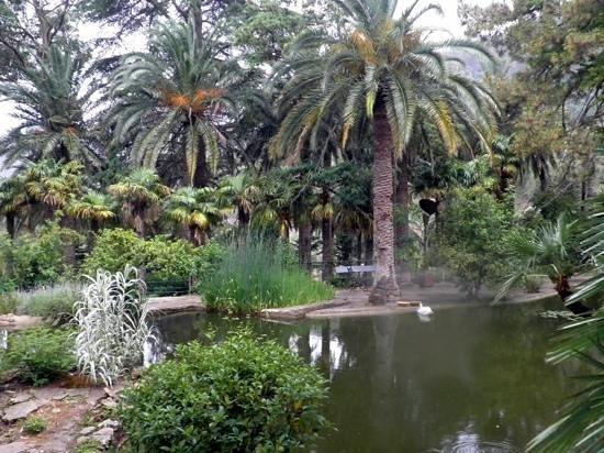 Alfabia. - Picture of Jardins de Alfabia, Bunyola - TripAdvisor