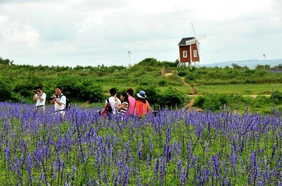 Dalian Yufo Park