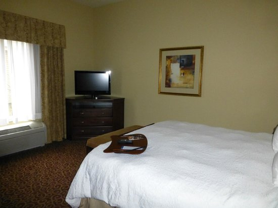 Hampton Inn & Suites Rochester - North : Room 126