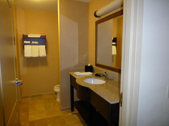 Hampton Inn & Suites Rochester - North : Bathroom in 126.