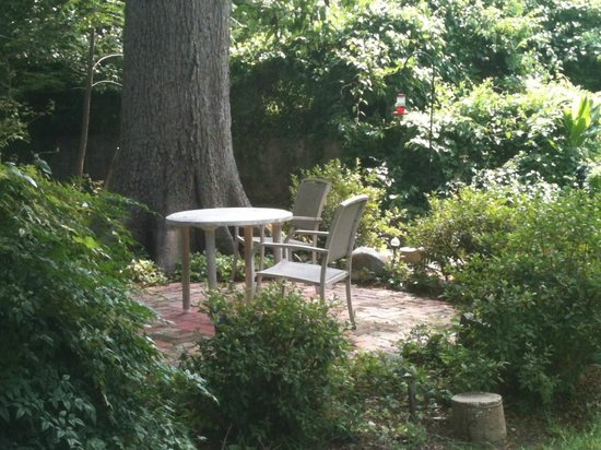 Chez des Amis Bed and Breakfast: Pecan Tree Patio