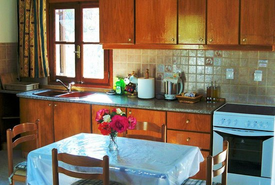 Villa Galini Lindos: Kitchen