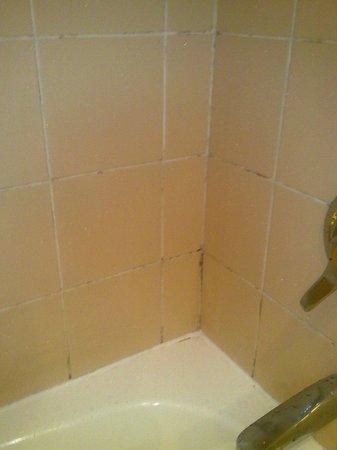 Sunnyside Park Hotel: Shower mould