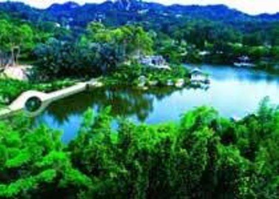 Xiamen Ziyun Rock