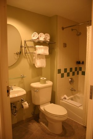 Hard Rock Hotel at Universal Orlando: Bathroom