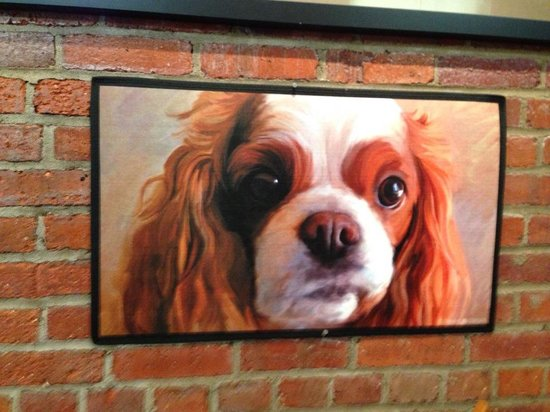 Haute Dogs & Fries: picture