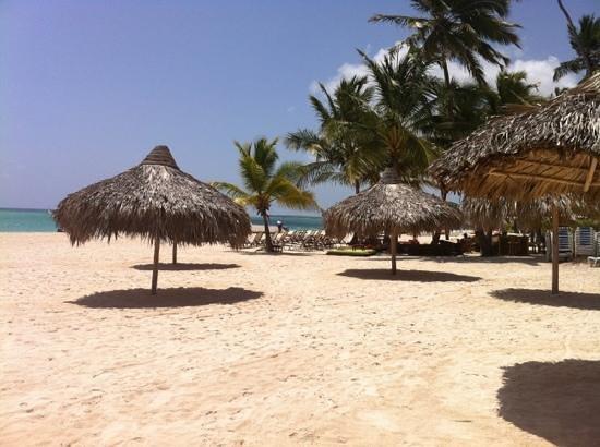 Villas Los Corales: Playa