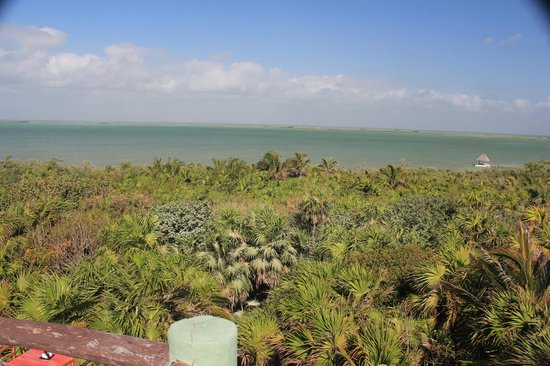 Cesiak Tours: View of lagoon from top deck of restaurant