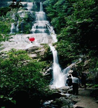 Jiuyi Mountain National Forest Park Foto