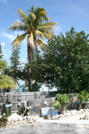 Blue Waters Motel: View from pool deck