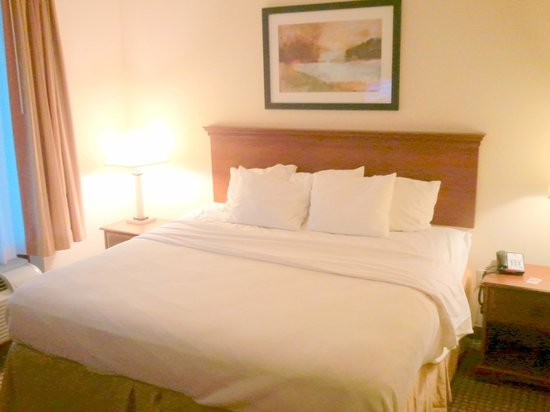 Comfort Inn & Suites: King sized Bed