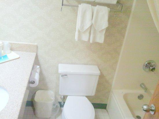 Comfort Inn Circleville: Bathroom