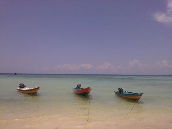 Arwana Perhentian Eco Resort & Beach Chalet: Local beach