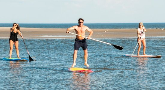 Kingfisher Paddleventures: Learning at low tide