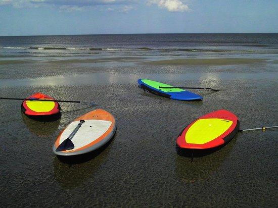 Saint Simons Paddleboard & Kayak (SSI SUP): SSI SUP boards on the outer sand bar.