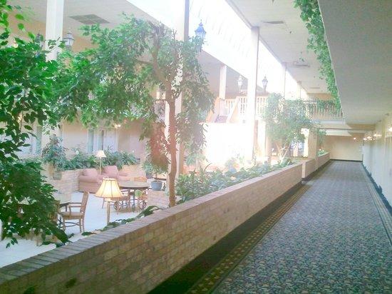 Clarion Inn & Suites and Conference Center: Atrium