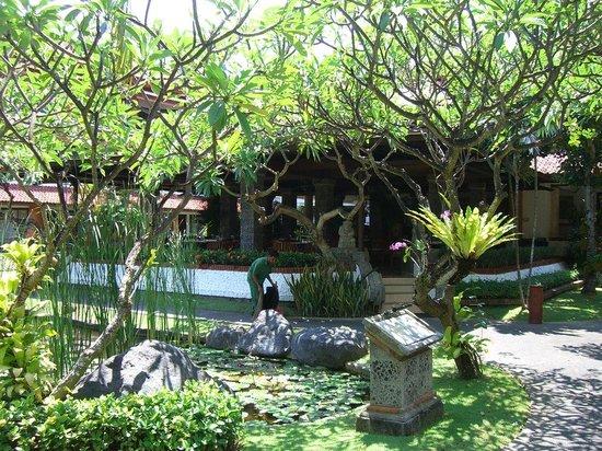Reiseleiter Windu - Private Tours