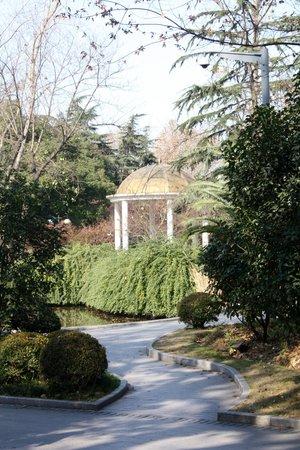 Bijie Forest Park