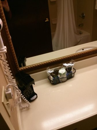 Hampton Inn Erie-South: A clean bathroom