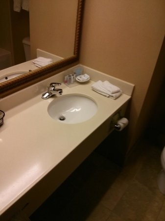 Hampton Inn Erie-South: Another shot of the bathroom