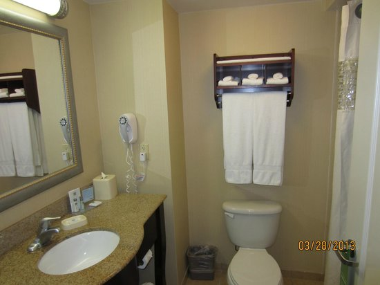 Hampton Inn & Suites Lake Wales : HISLW3