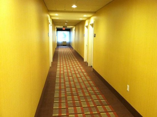 Hampton Inn & Suites Harrisburg North: Corridor on Floor