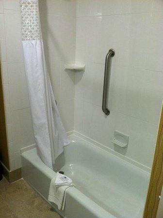 Hampton Inn & Suites Harrisburg North: Shower & tub
