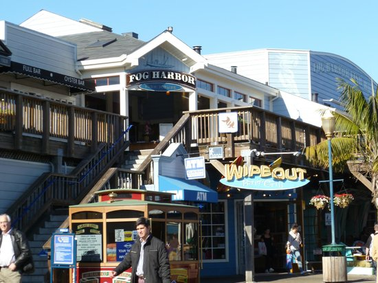 Aquarium picture of pier 39 san francisco tripadvisor for Fish store san francisco