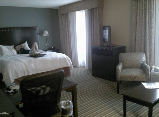 Hampton Inn & Suites Fort Belvoir Alexandria South: Room
