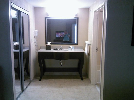 Hampton Inn & Suites Fort Belvoir Alexandria South: view of sink area