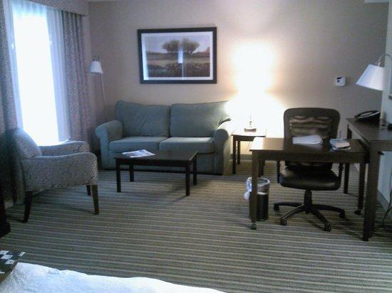 Hampton Inn & Suites Mt. Vernon/Belvoir-Alexandria South: Room