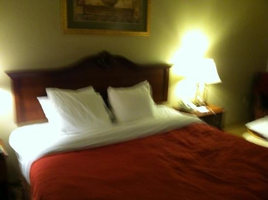 Country Inn & Suites By Carlson, Bessemer : king room