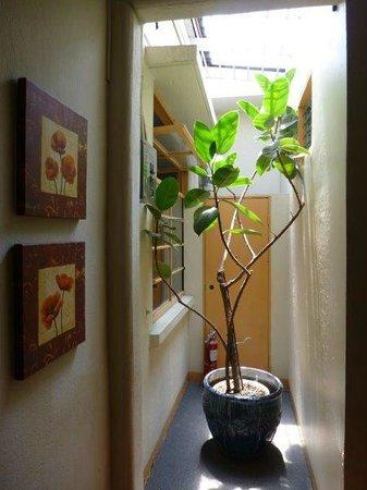 Kekoldi Hotel: Interior hallway